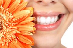 kräftiges Zahnfleisch, kein Bluten, frischer Atem
